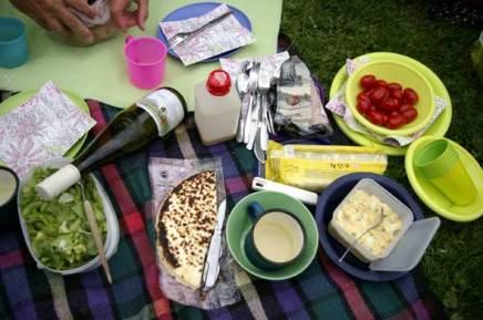 piknikillä linnajazzissa