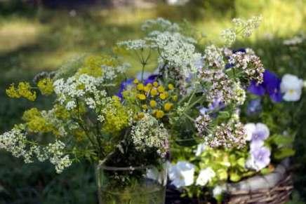 heinäkuun kukkia