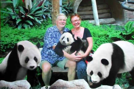pandoja tapaamassa