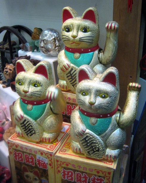 HAPPU CAT MATKASI KANSSAMME SUOMEEN
