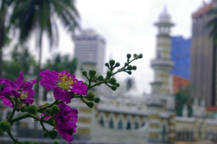 reppuretkellä malesiassa 2003