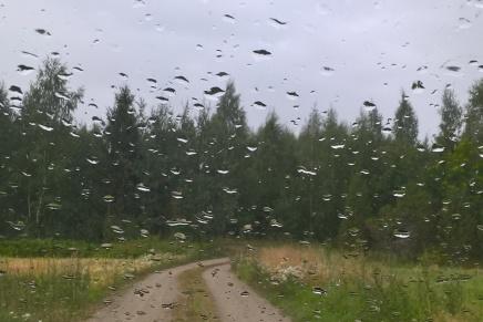kaivattu sade