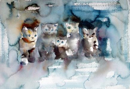 kissoja ja koiria